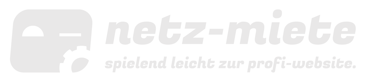 netz-miete - spielend leicht zur profi-website